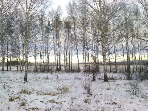 dalnekonstantinovskiy-rayon фото