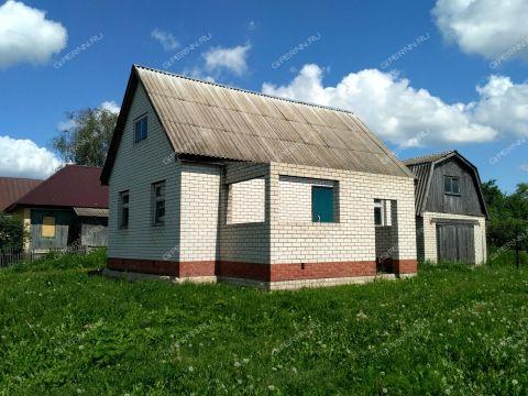 dom-selo-elizarevo-diveevskiy-rayon фото