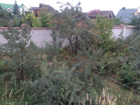 dom-ul-krasnaya фото
